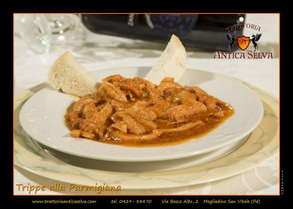 Trippe alla Parmigiana