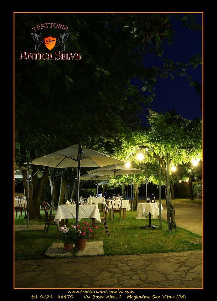 Ristorante-Montagnana-Giardino-Estivo