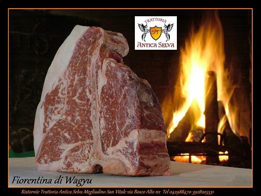 Wagyu-Kobe-Ristorante-Montagnana-Padova