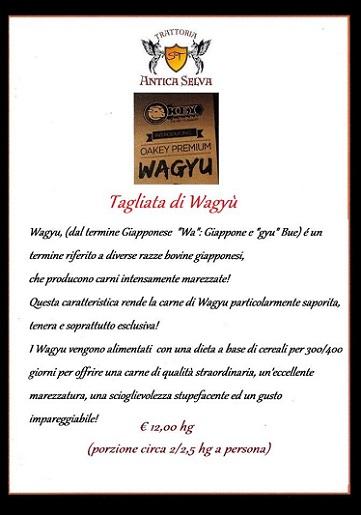Wagyu_Kobe_Padova