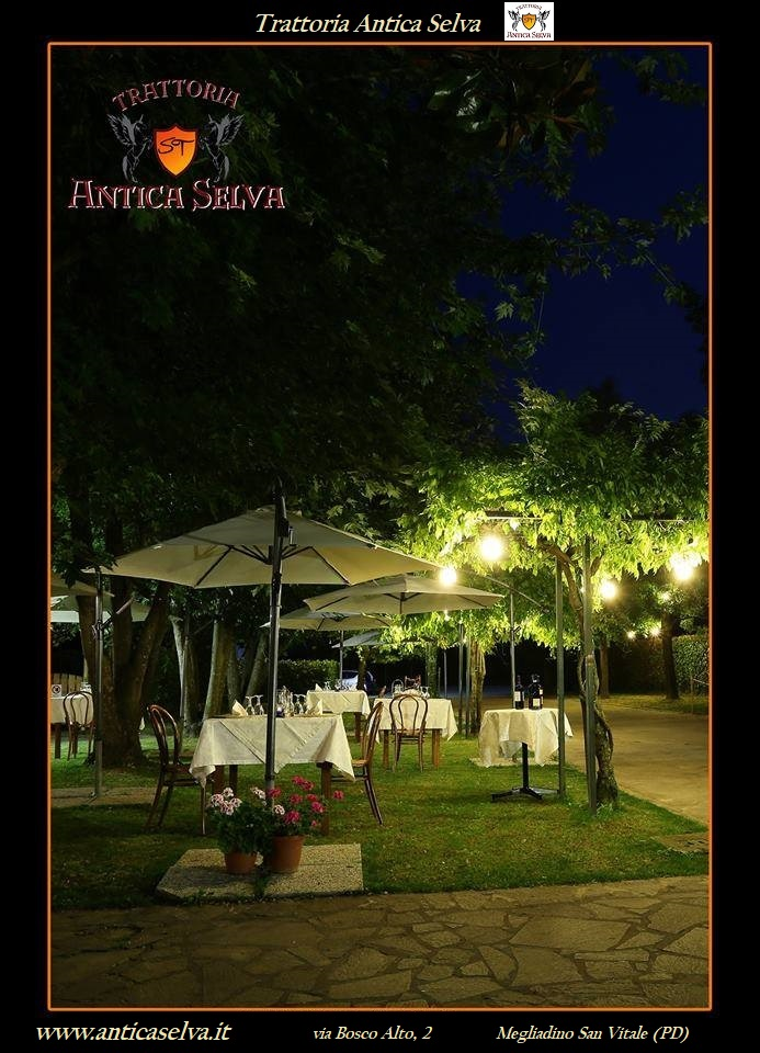 Ristorante-Giardino-Estivo-Montagnana
